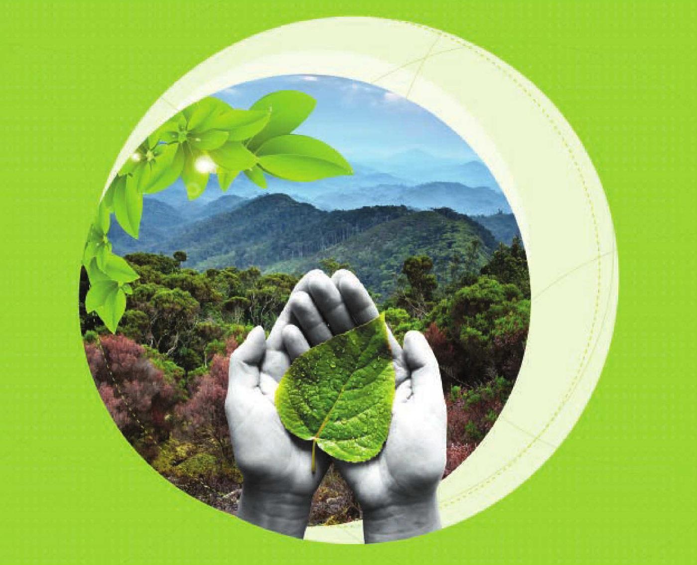ایمنی و محیط زیست در شرکت آریا ترانسفو شرق